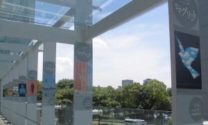 「マグリット展」国立新美術館までの~