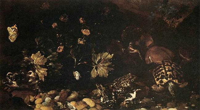 「蛇と蛙、亀、トカゲの静物」(17世紀頃)パオロ・ポルポラ