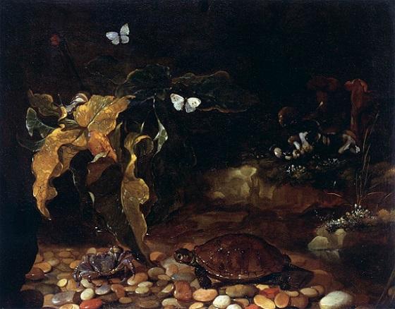「亀と蟹」(1650‐1655年頃)パオロ・ポルポラ