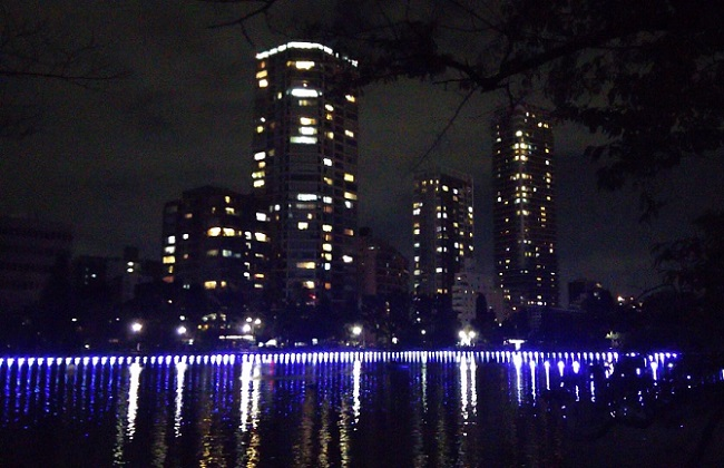 ミナモミラー …「TOKYO数寄フェス」