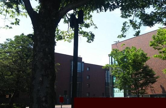 東京都美術館 …ボイマンス美術館所蔵 ブリューゲル「バベルの塔展」より