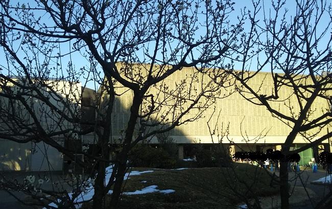 大雪から1週間後の国立西洋美術館 in 2018