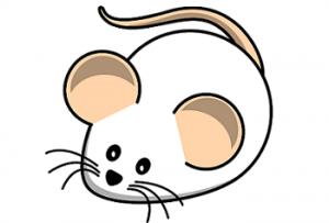 MOUSE(ネズミ)