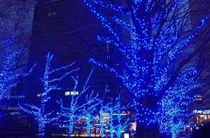 正月の横浜美術館とその周辺の様子