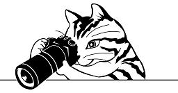 ネコのカメラマン