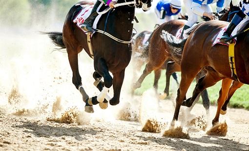 競馬(Horse Racing)